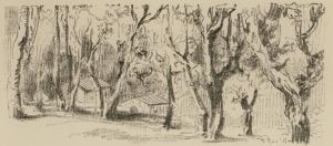 Λεπροί στο δάσος